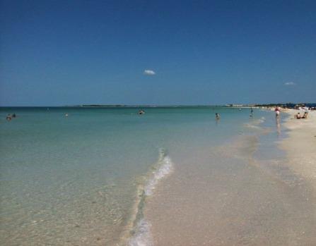 Caladesi Island, FL