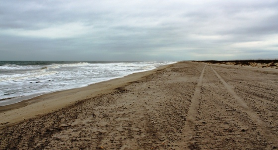 Fort Fisher State Park