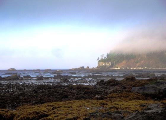 Cape Alva