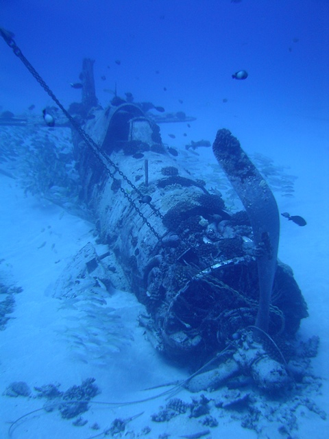 Front view of the Corsair Wreck