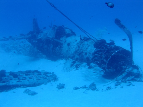 Side view of the Corsair Wreck