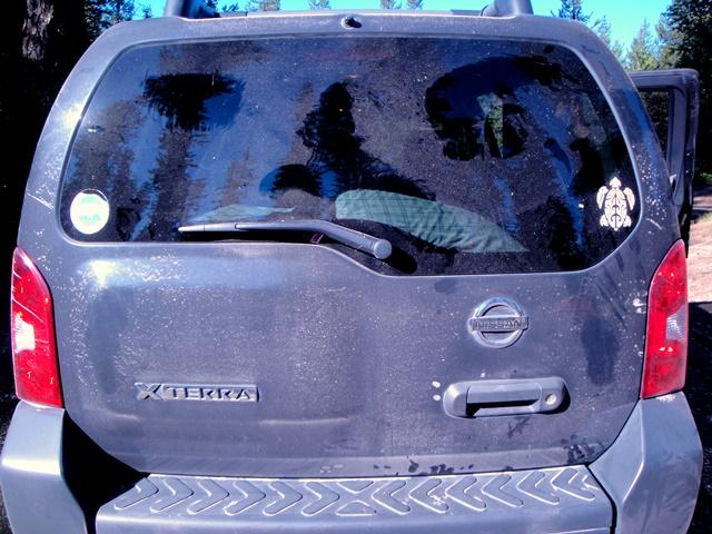 Bear markings on the dusty Xterra- WA