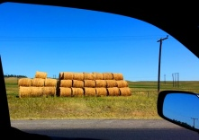 Hay Now! in WY